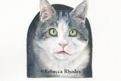 watercolor-cat-titan-2-rebecca_rhodes