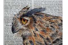 watercolor-ink-owl-dictionary-page-b-rebecca_rhodes