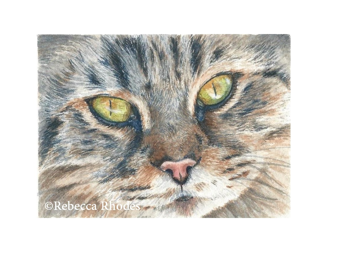 World Watercolor Month – It's Cat Week