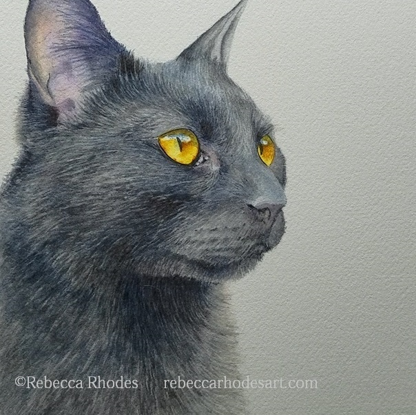 How to Paint a Black Cat in Watercolor