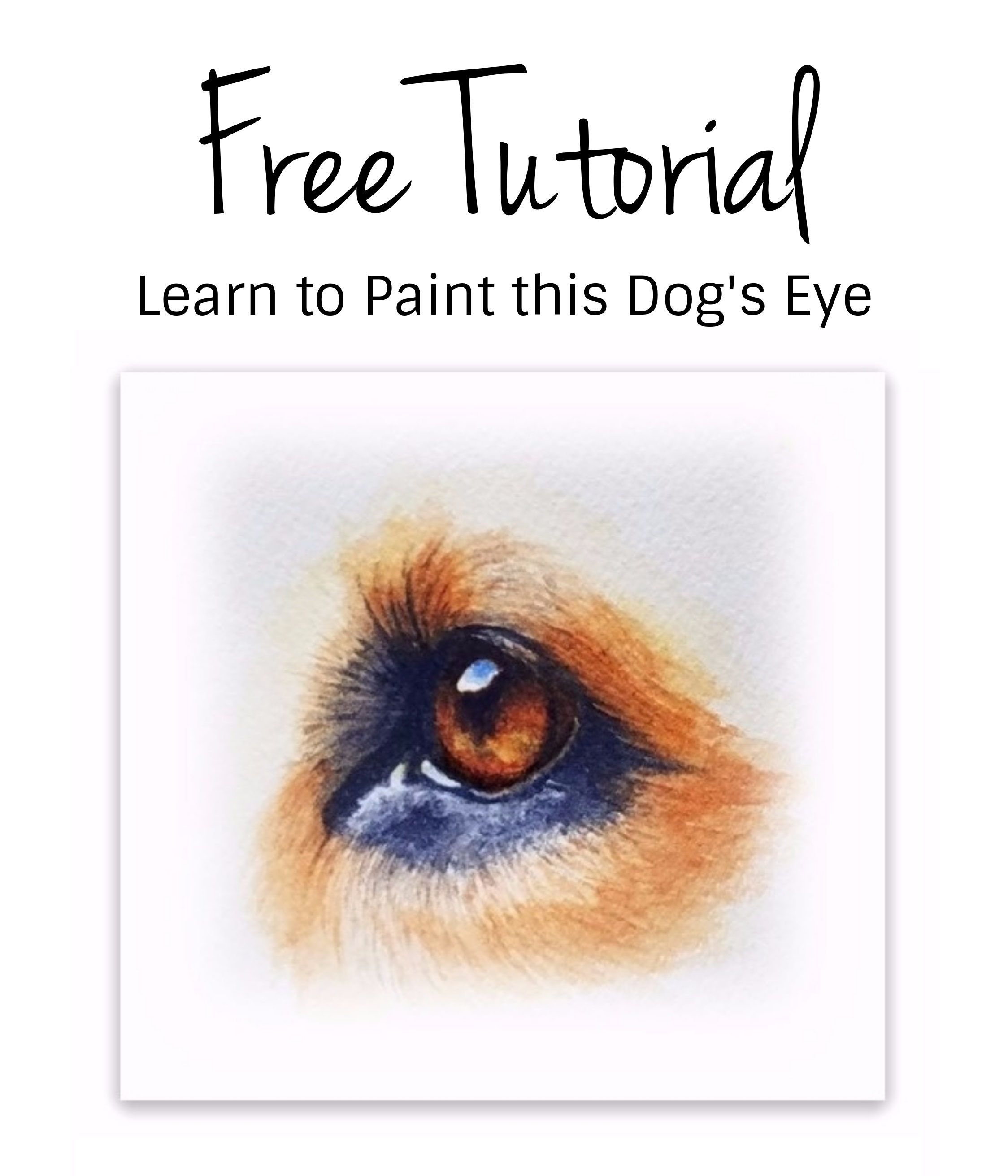 411528342984 How to Paint a Dog s Eye in Watercolor